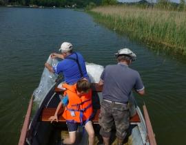Zarybienie sandaczem na Jeziorze Czchowskim